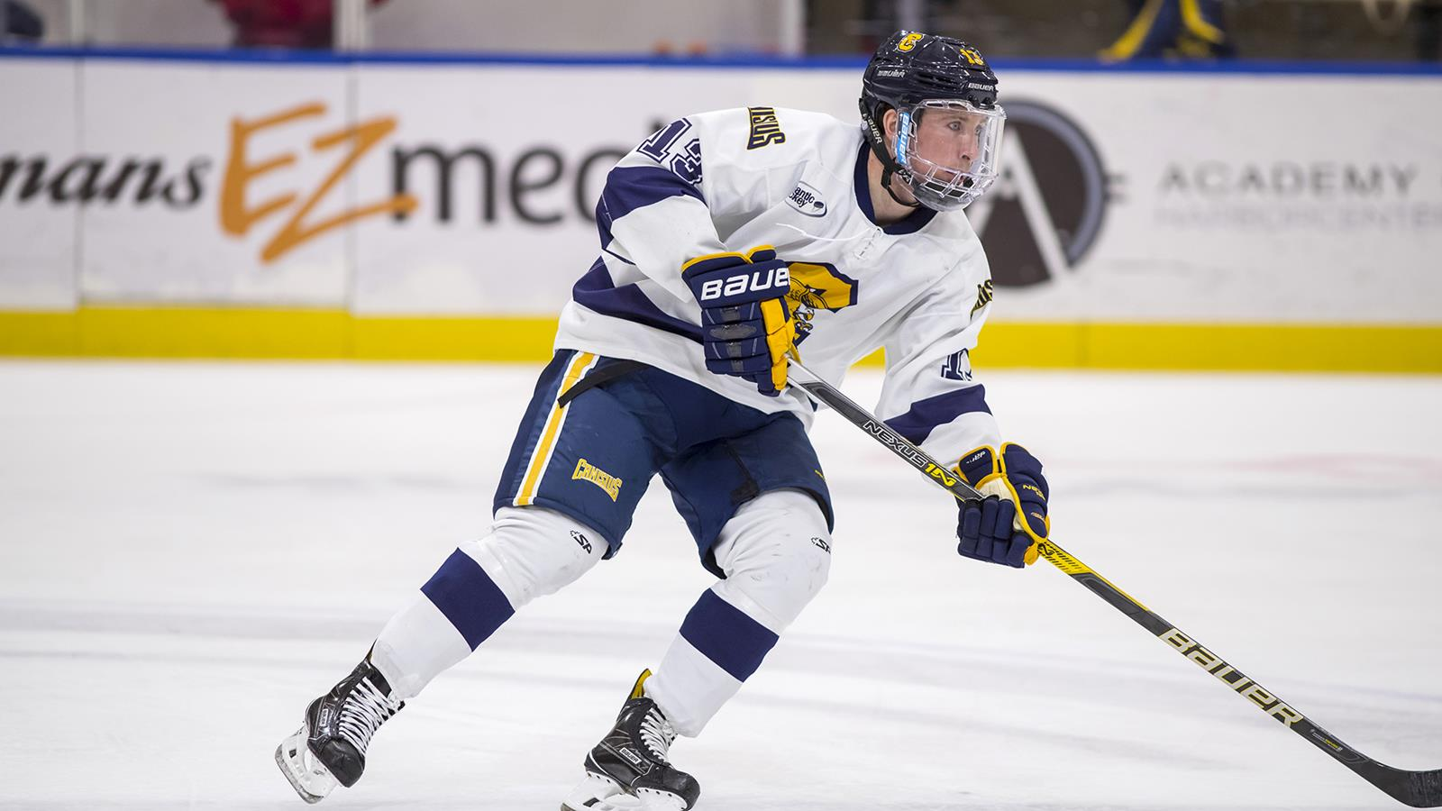 Image result for canisius hockey 2018